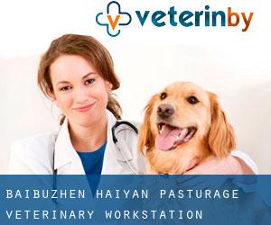 Baibuzhen Haiyan Pasturage Veterinary Workstation