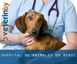 Hospital de animales en Benxi