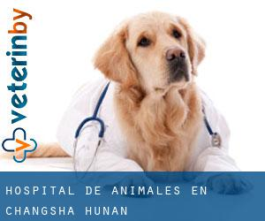 Hospital de animales en Changsha (Hunan)