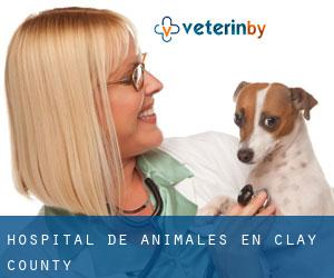 Hospital de animales en Clay County