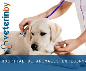 Hospital de animales en Lobnya