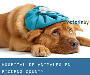 Hospital de animales en Pickens County