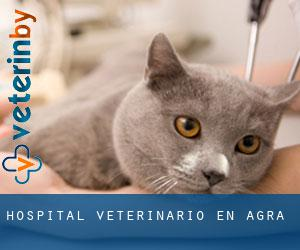 Hospital veterinario en Agra