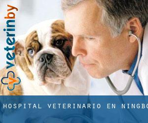 Hospital veterinario en Ningbo