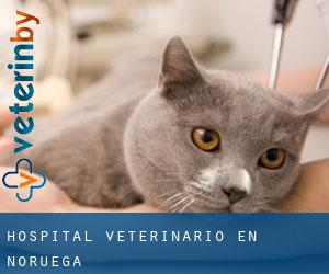 Hospital veterinario en Noruega