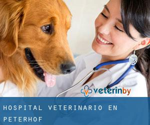 Hospital veterinario en Peterhof
