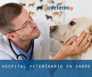 Hospital veterinario en Sarre