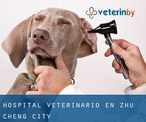 Hospital veterinario en Zhu Cheng City