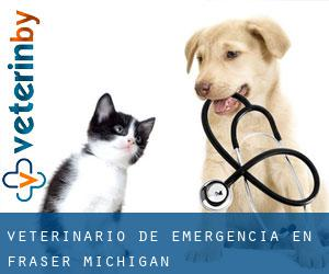 Veterinario de emergencia en Fraser (Michigan)