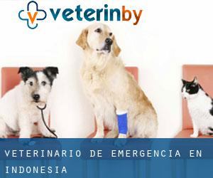 Veterinario de emergencia en Indonesia