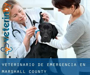 Veterinario de emergencia en Marshall County
