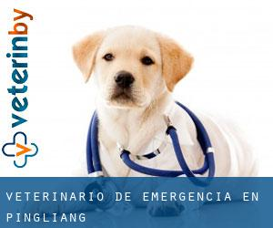 Veterinario de emergencia en Pingliang