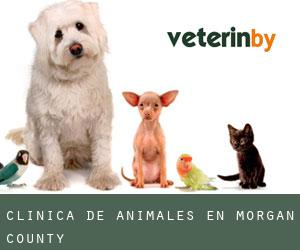 Clínica de animales en Morgan County