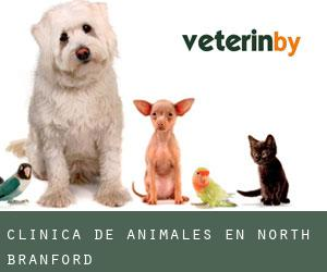 Clínica de animales en North Branford
