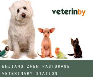Enjiang Zhen Pasturage Veterinary Station