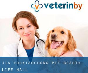 Jia Youxiaochong Pet Beauty Life Hall