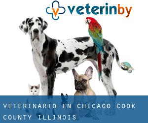 veterinario en Chicago (Cook County, Illinois)