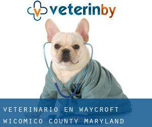 veterinario en Waycroft (Wicomico County, Maryland)