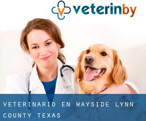veterinario en Wayside (Lynn County, Texas)