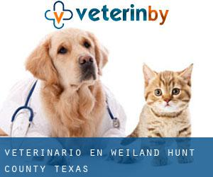 veterinario en Weiland (Hunt County, Texas)