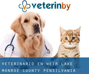 veterinario en Weir Lake (Monroe County, Pensilvania)