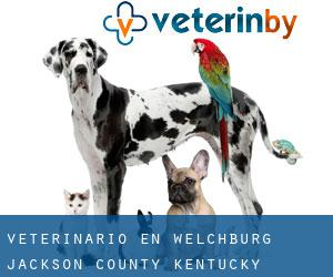 veterinario en Welchburg (Jackson County, Kentucky)