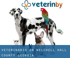 veterinario en Welchell (Hall County, Georgia)