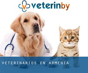Veterinarios en Armenia