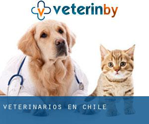 Veterinarios en Chile